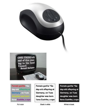 Mattingly Wired Mouse CCTV